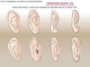 drawing-ears-02